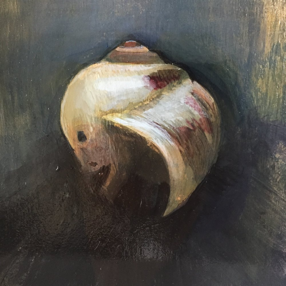 "Moonsnail in Moody Light /  8 x 8""  / oil on birch panel."