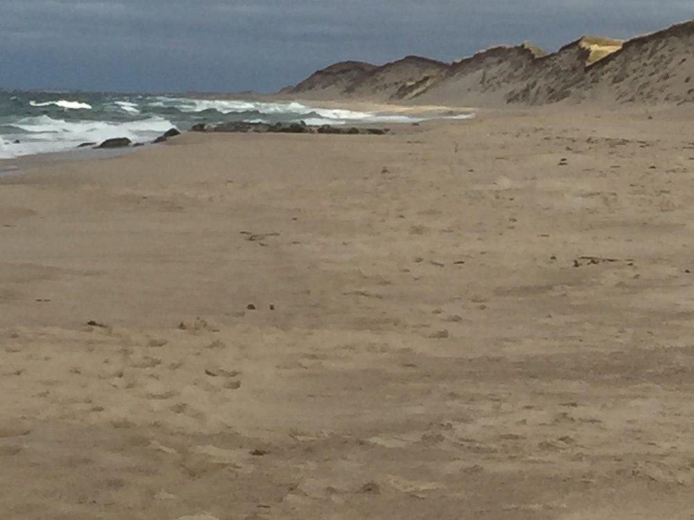 north beach, sable island