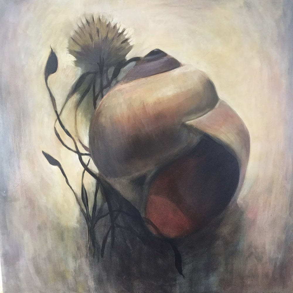 "Moonsnail & Aster / 30 x 30"" / Oil on Birch Panel"