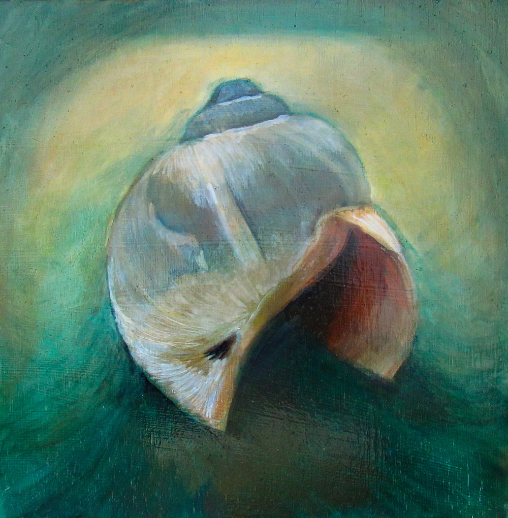 "Moonsnail in Emerald Light / 10 x 10"" / oil on birch panel"