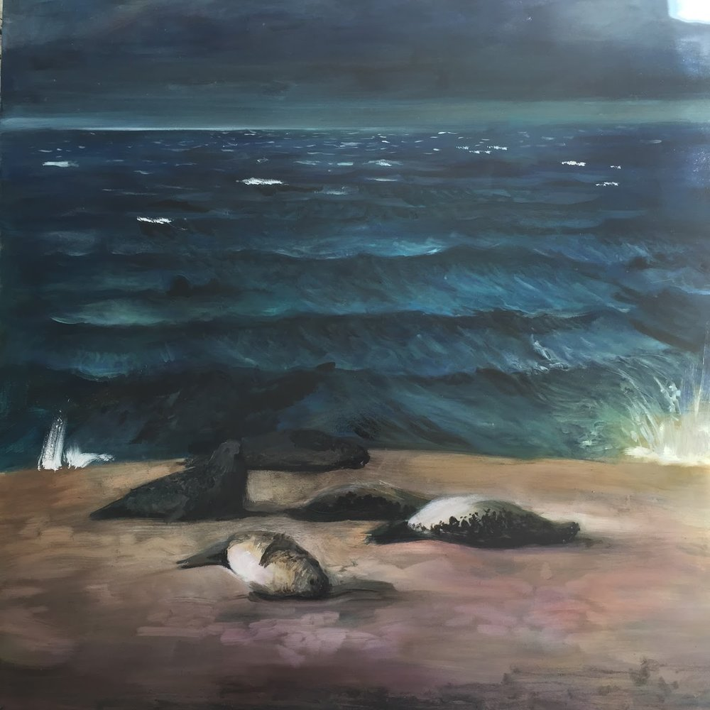 "Seals on North Beach / 30"" x 30""/ oil on birchwood panel"
