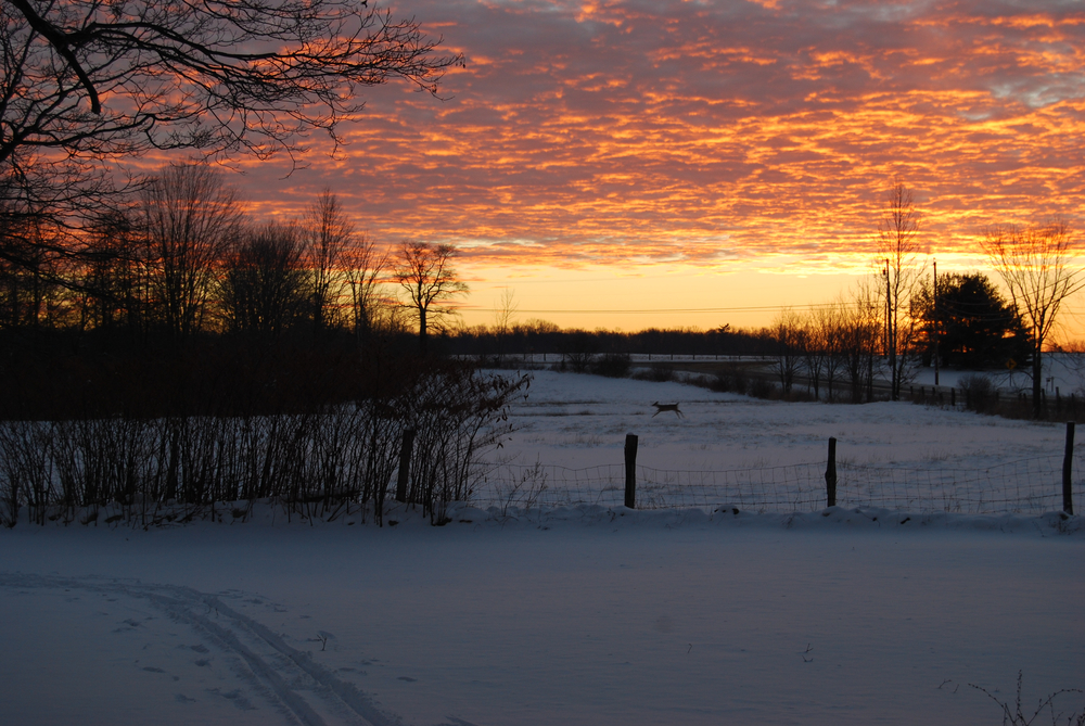 Winter Sunrise Blaze6 by S. Benash.jpg