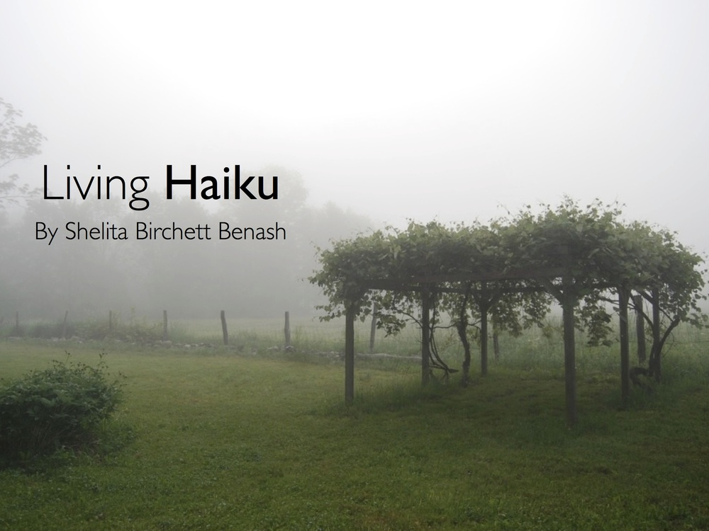 Photograph and haiku by Shelita Birchett Benash