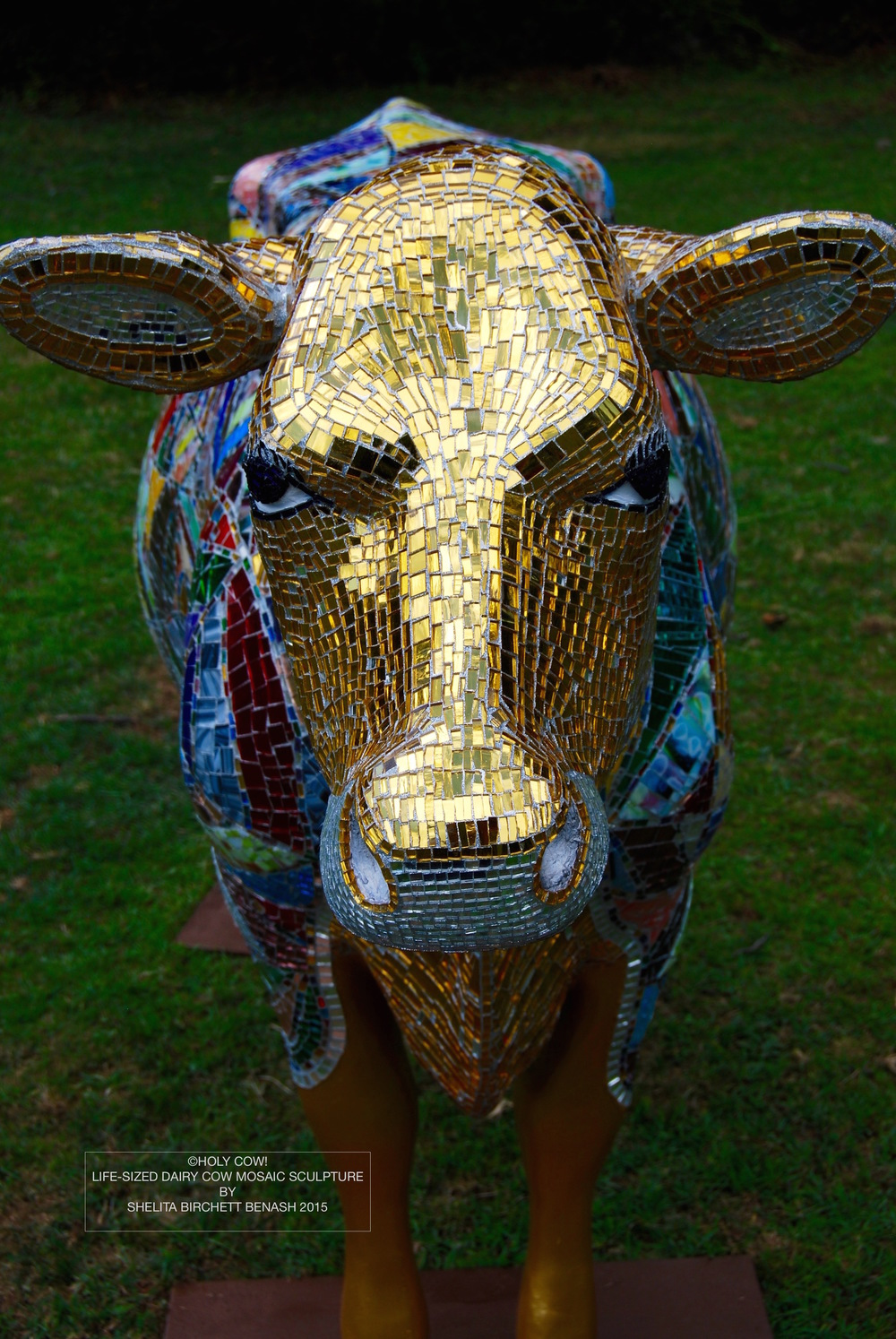 HOLY COW_SHELITA BIRCHETT BENASH_2015_FRONT_DETAIL