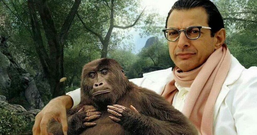 pic-jeff-goldblum-shower-curtains-are-a-thing-now-but-has-science-gone-too-far.jpg