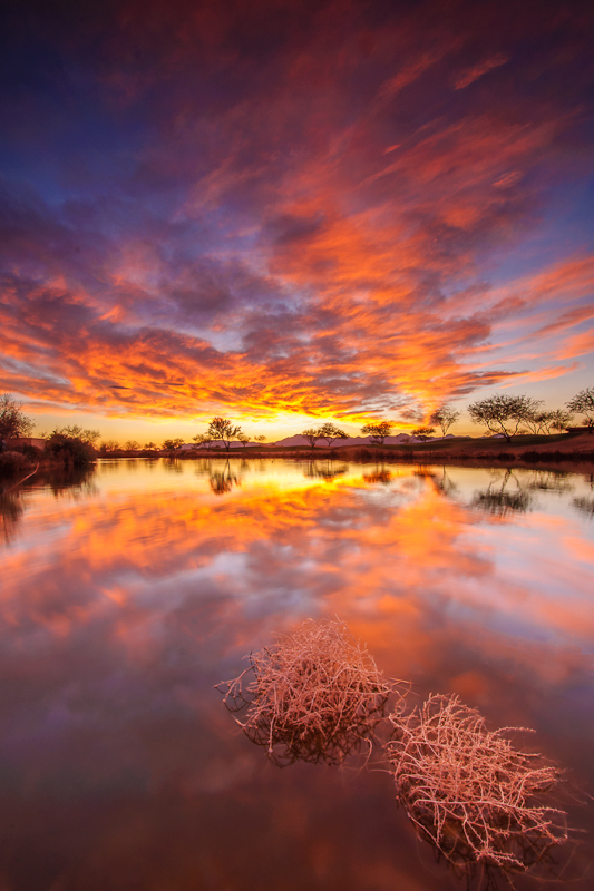 Arizona3.jpg