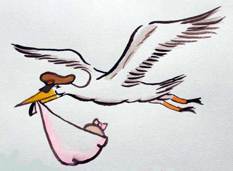 stork_watercolor
