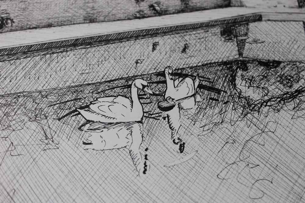 swanslewisclark