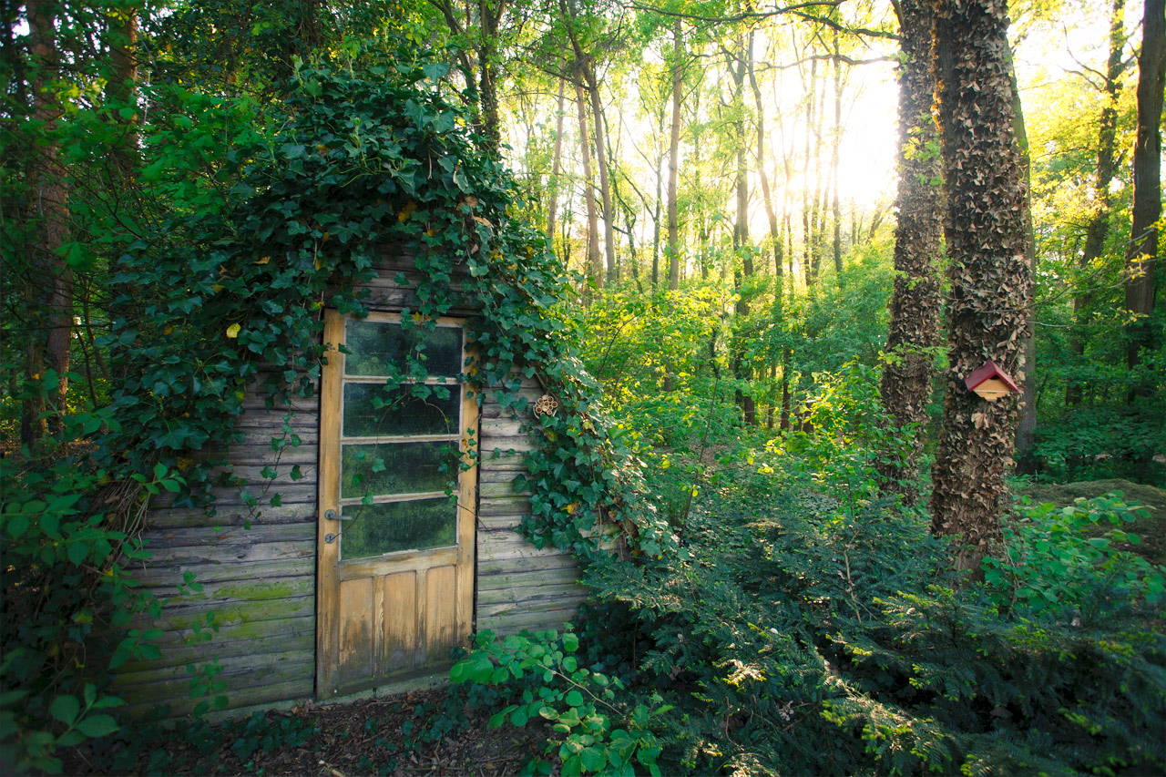 ohmymissmisery :     Storage cabin in the Campine, Belgium | Cabin Porn on We Heart It -   http://weheartit.com/entry/56094872/via/V_Mars
