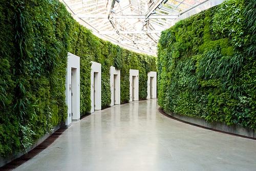 s-a-n-d-a-l-w-o-o-d :     Vegetated corridor (by  nikkornova )
