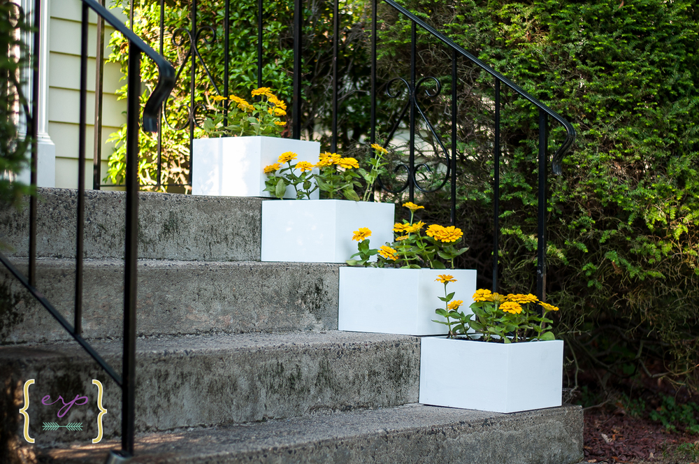 Stair Box Planters