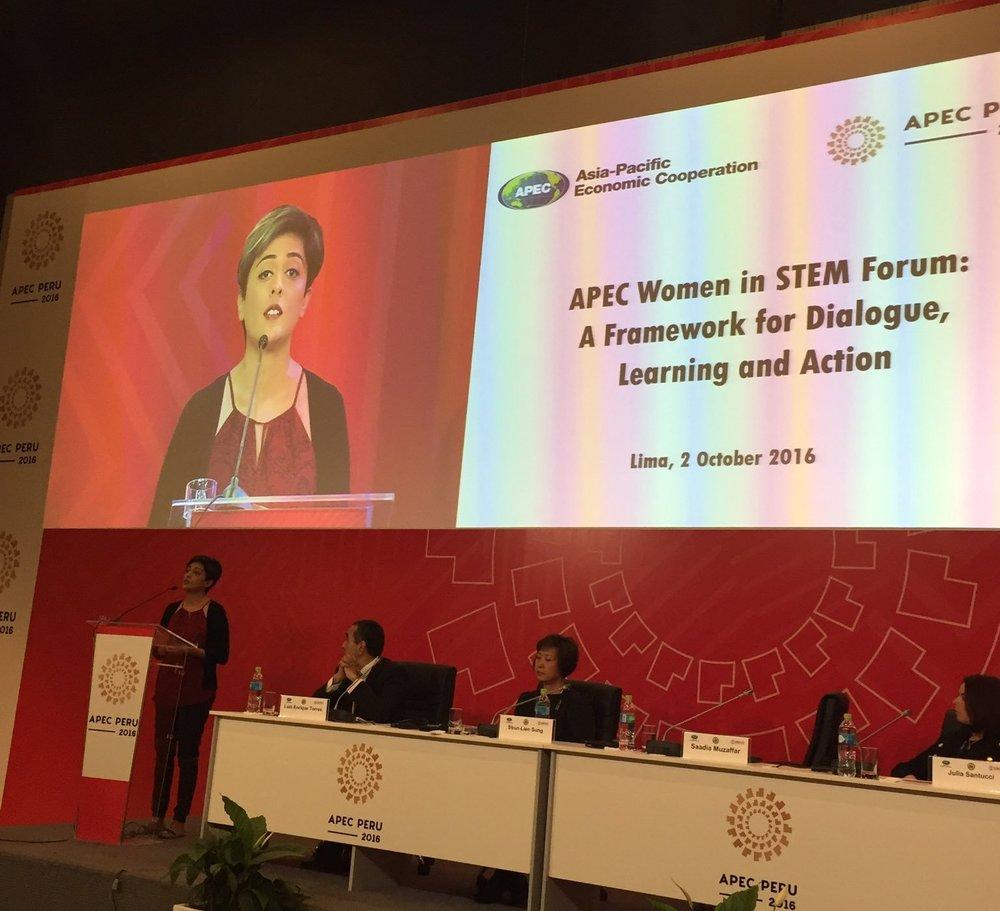 APEC Peru, 2016