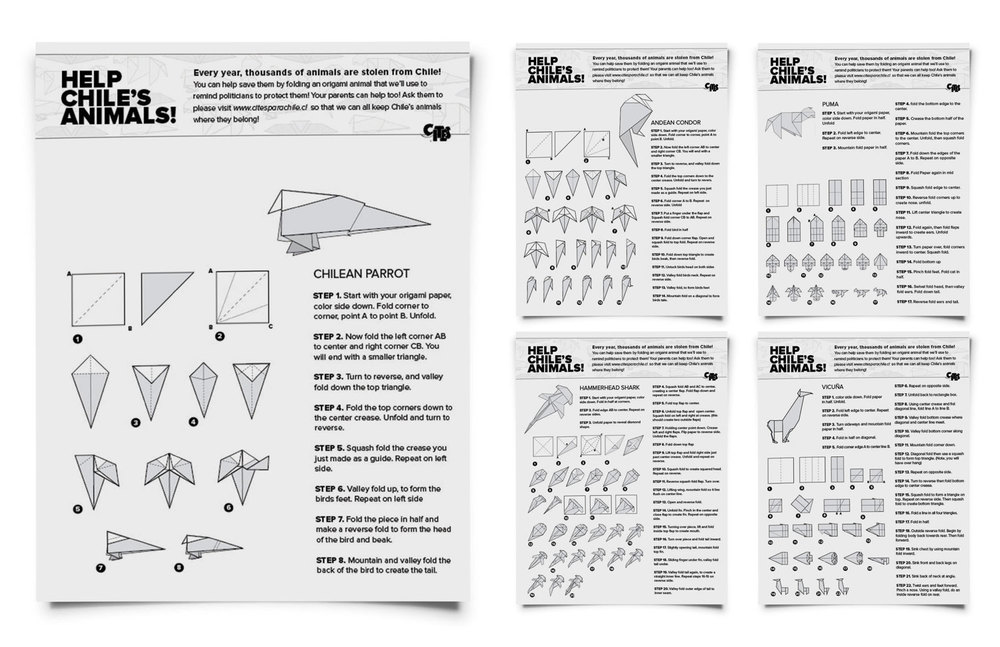 Printable instructions on how to fold some origami models of Chile's most endangered species.