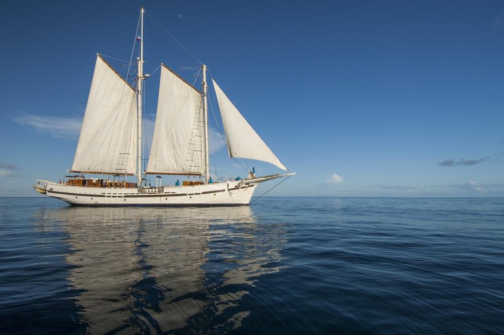 Raja Laut sailing
