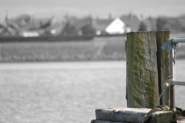 River Wyre.jpg