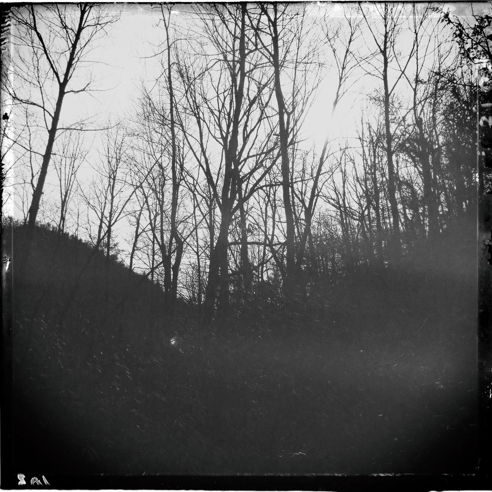 horse-creek-8.jpg