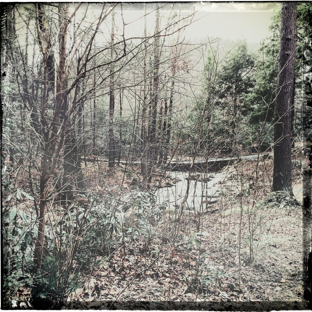 horse-creek-3.jpg