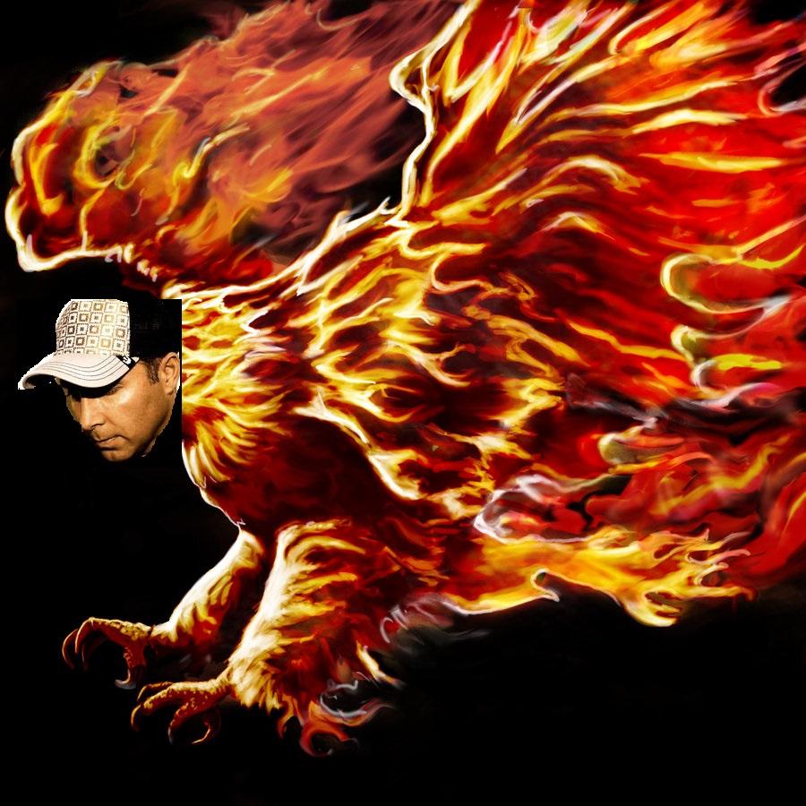 phoenix_4534337_lrg.jpg