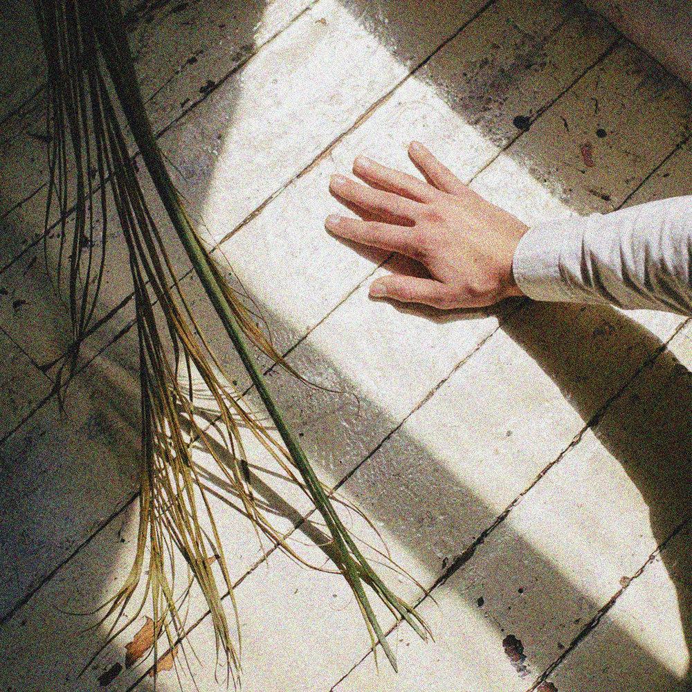 LIFER -From Kuru             [FA033 / CS+Digital]