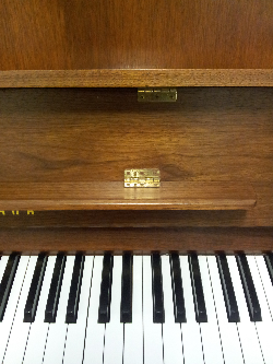 The Only Only Child in the World piano.jpg.jpg