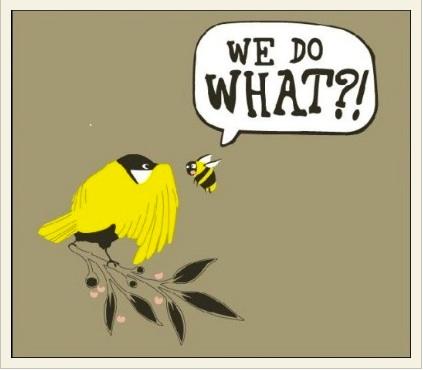 BIrds & Bees.jpg