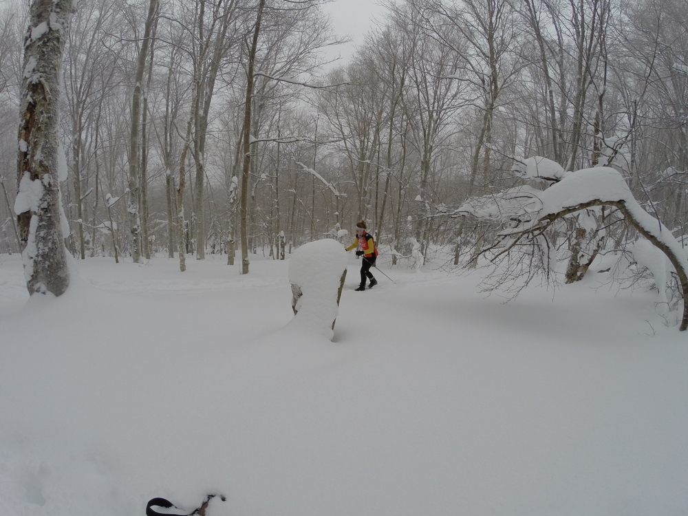 Like back woods single track the ski trails switch back up the snow blasted mountain into a winter wonderland