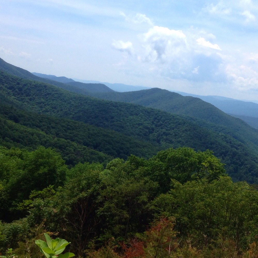 Looking south west into West Virginia from the top of camp run.