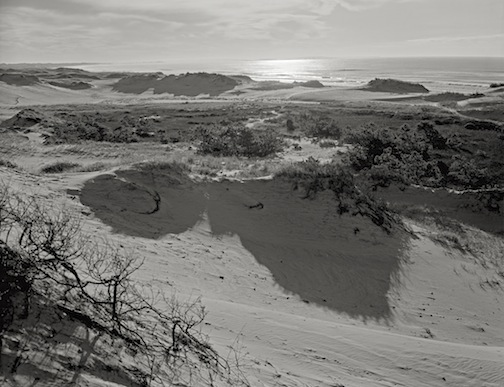 Horseneck Dunes towards Cuttyhunk, 1980.jpg