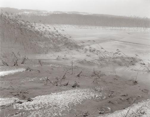 Snow Ice, Sand & Reeds, Goosebury Neck, 1978.jpg