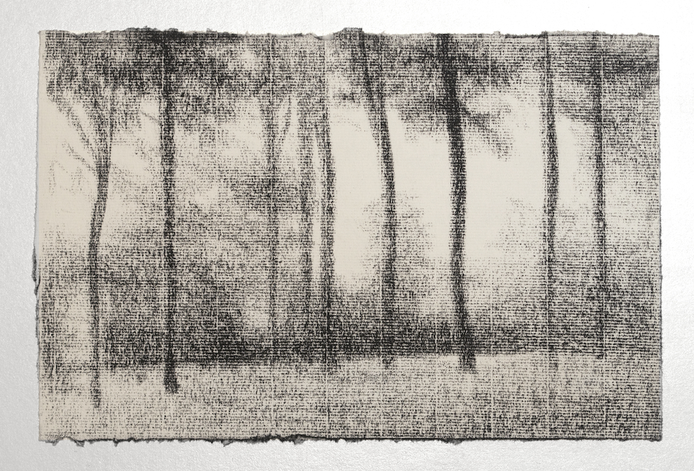 "Nixon, Andrew, Tree Study No. 3, 2012, Conté on paper, 7 ""H x 10.5 ""W, $250.jpg"