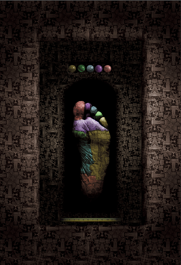 "One Foot  , Harvey Goldman, 2013  17"" x 22""  digital print"