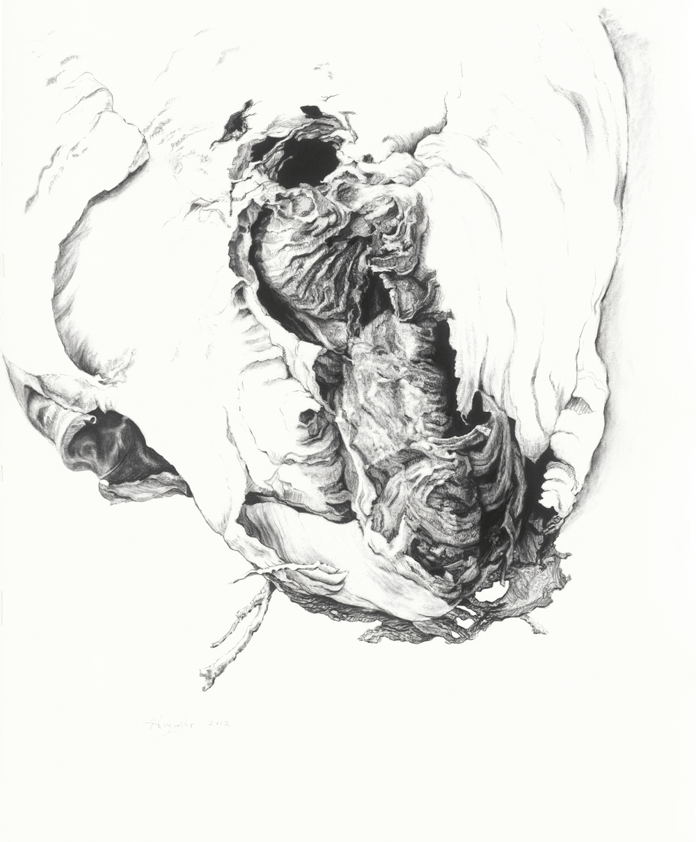 "Enter Here  , Huguette May, 2012.  21.5"" x 28"", charcoal on paper  limited edition archival prints also available"