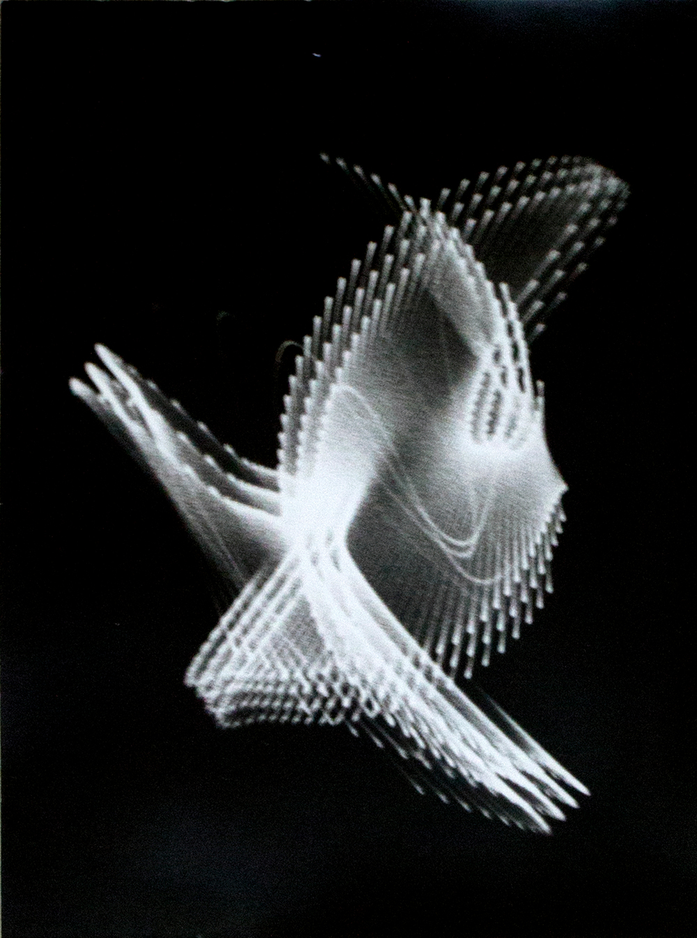 "Ben Lapofsky  Electronic Abstraction #4, oscilloscope, high speed film, photo paper, 16.5""x13"", 1954-56"