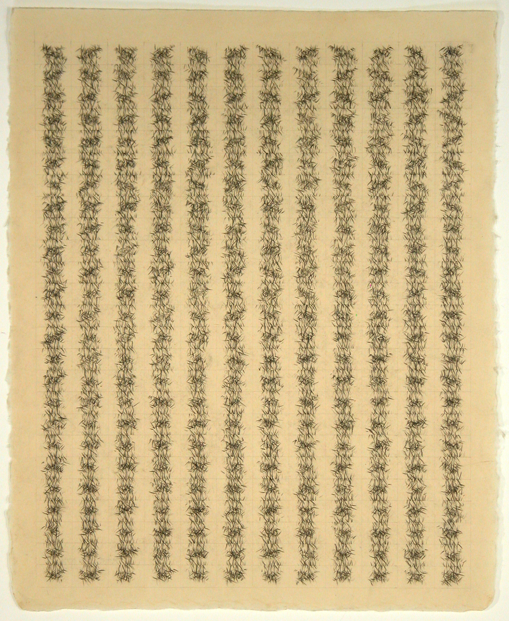 "pstme 15     Jacqueline Ott, 2001  grpahite on gampi  20.5"" x 16.5"""