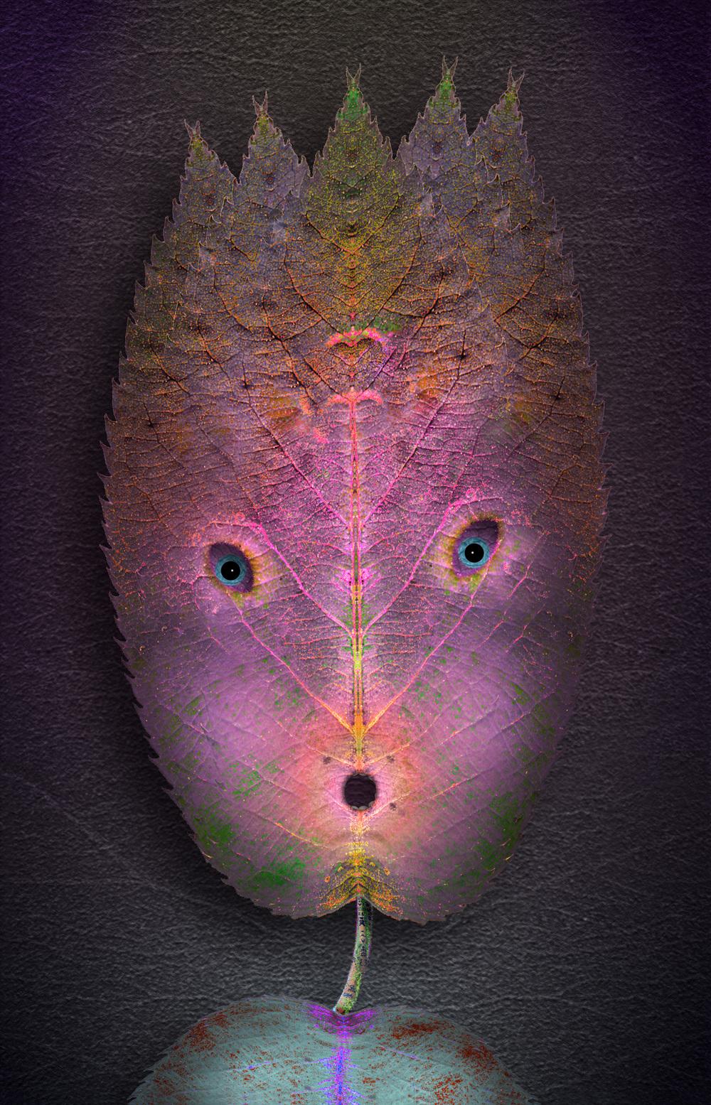 "Ash Face,    Harvey Goldman, 2013   26"" x 36"" Digital Print, 1/20"