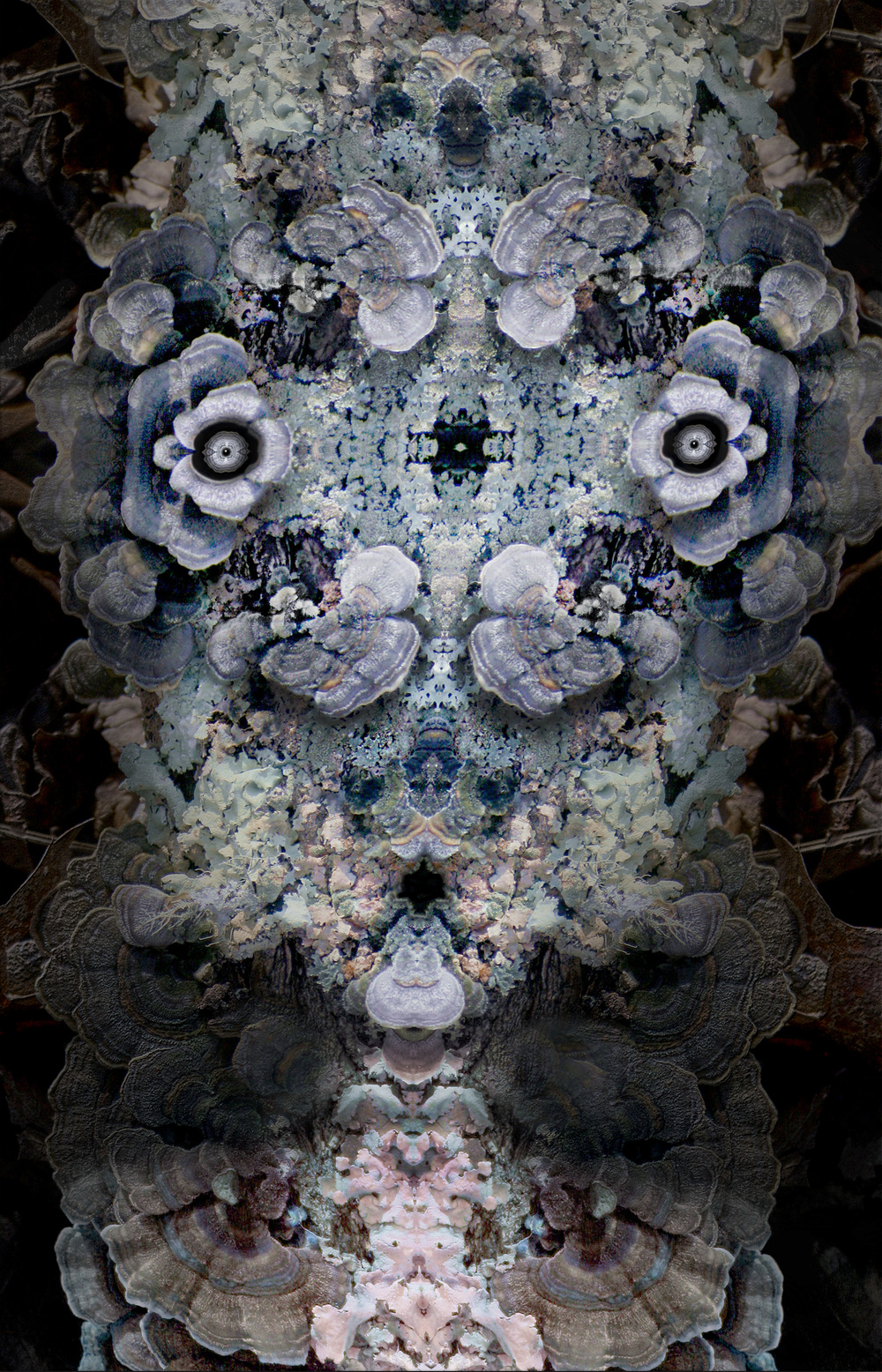"Guiseppe's Grandmother,  Harvey Goldman, 2014  26"" x 36"",Digital Print, 1/20"