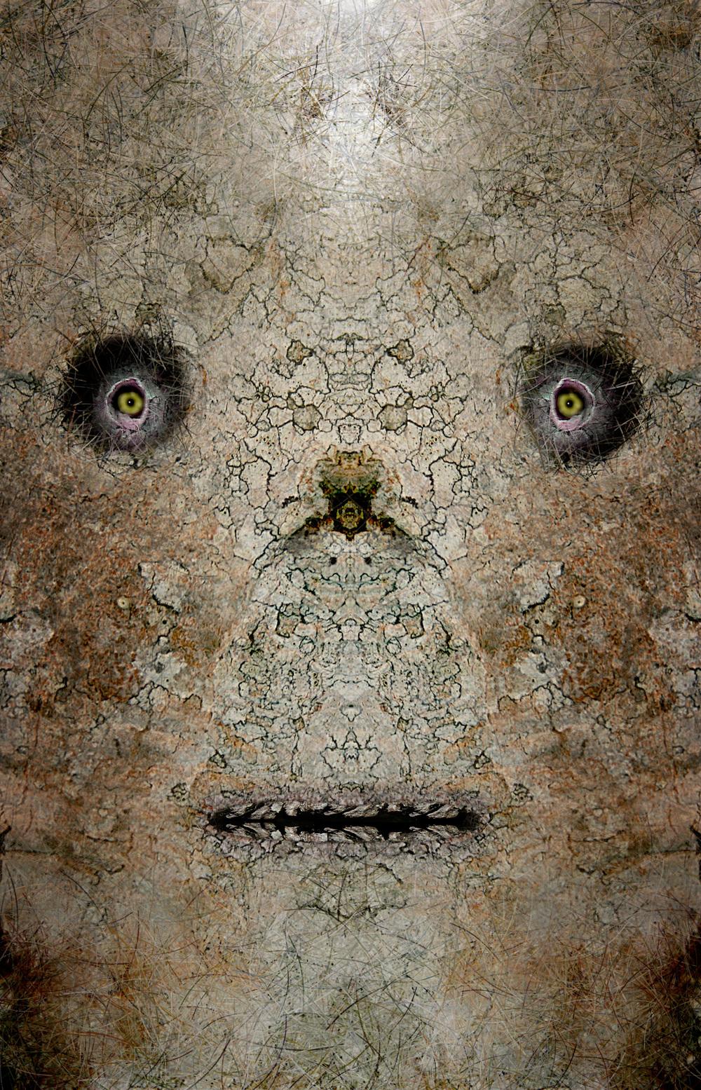 "Teotehuacan Birch Mask,  Harvey Goldman, 2014  26"" x 36"",Digital Print, 1/20"