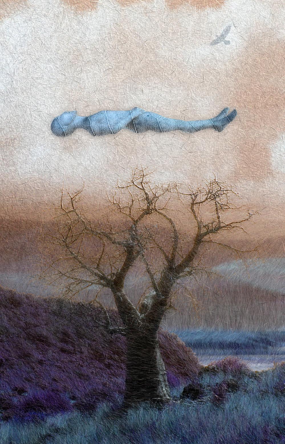 """Baobob Tree Dream,    Harvey Goldman, 2013    26"""" x 36,"""" Digital Print, 1/20"""