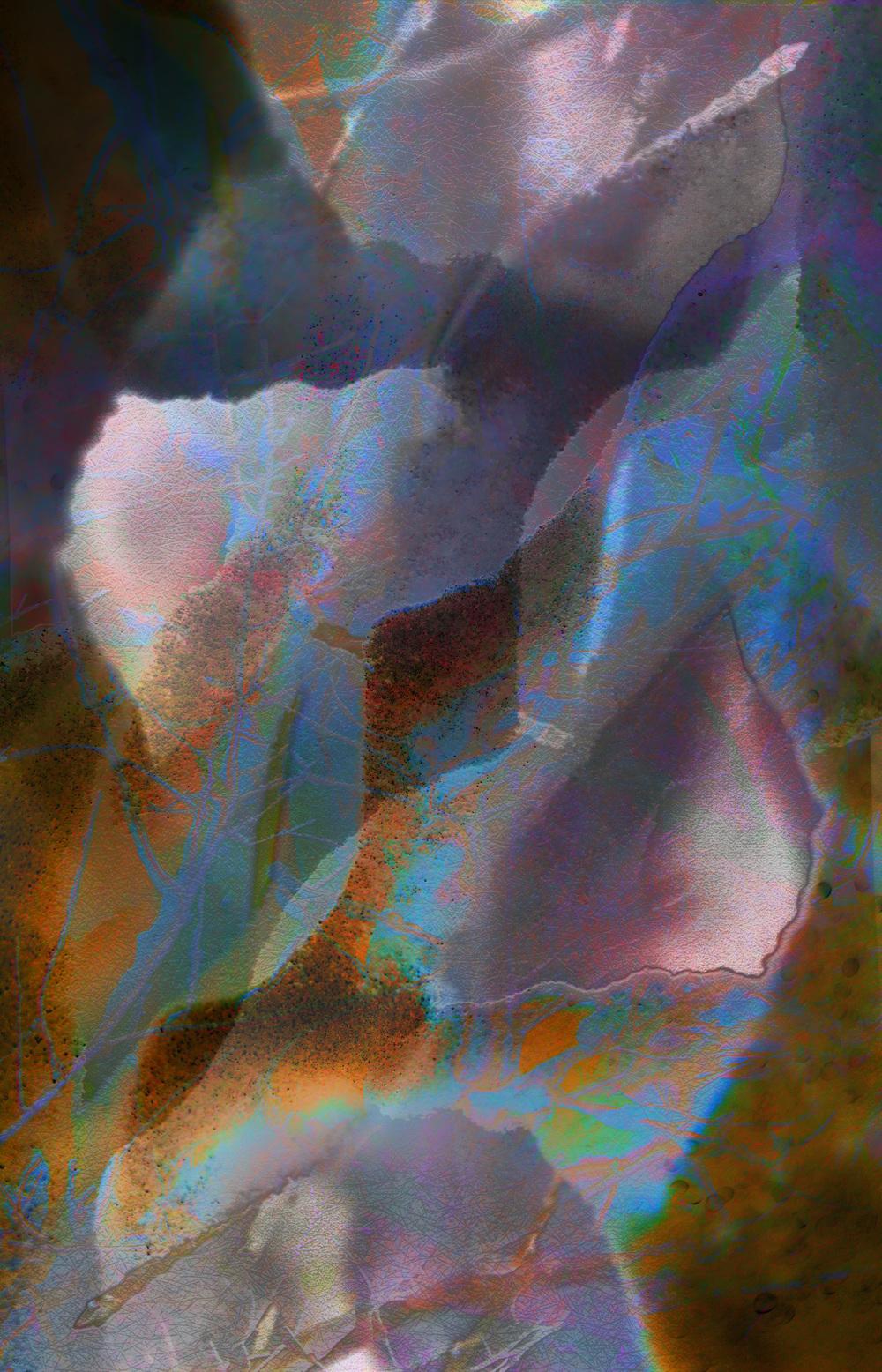 "Coincidentia Oppositorum 8,   Harvey Goldman, 2014   26"" x 36,"" Digital Print, 1/20"