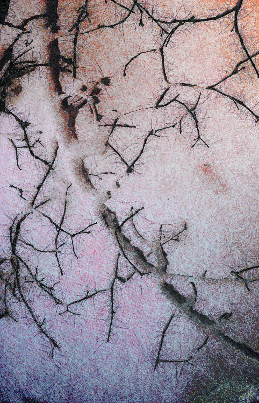 "Snow 01,   Harvey Goldman, 2013   26"" x 36,"" Digital Print, 1/20"