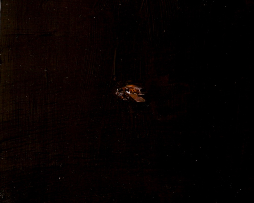 "Beja (Bee),  Oil on board, 5"" x 6""  $550"