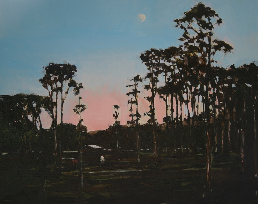 "Moonlight Over a Farm that Will be Under an Artificial Lake (Nueva Guinea, eastern Nicaragua),  Oil on board, 16"" x 22""  $3100.00"
