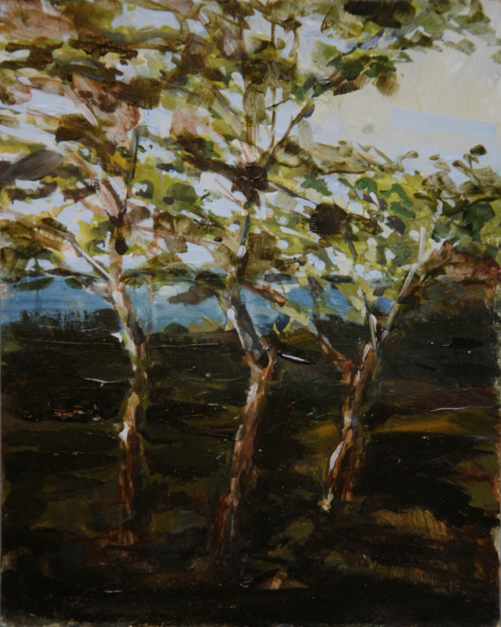 "The Water Beyond the Trees,  Oil on board, 10"" x 8""  Sold"