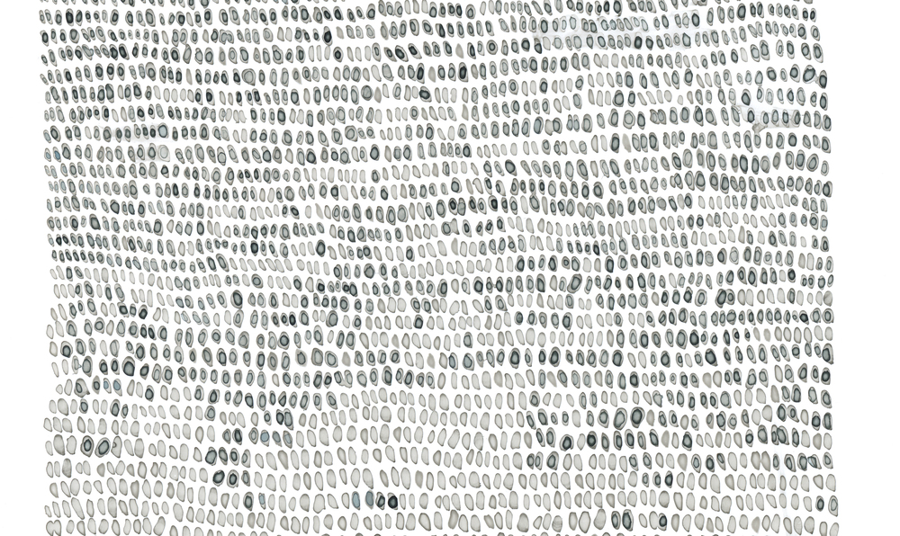 "Wendy Wolf   Examined Repetition: Ink no. 25-12 , 2014  (detail)  Highly pigmented acrylic ink and Rapidograph ink on Yupo paper  Unframed: 25"" x 25"" Framed: 30"" x 30"""