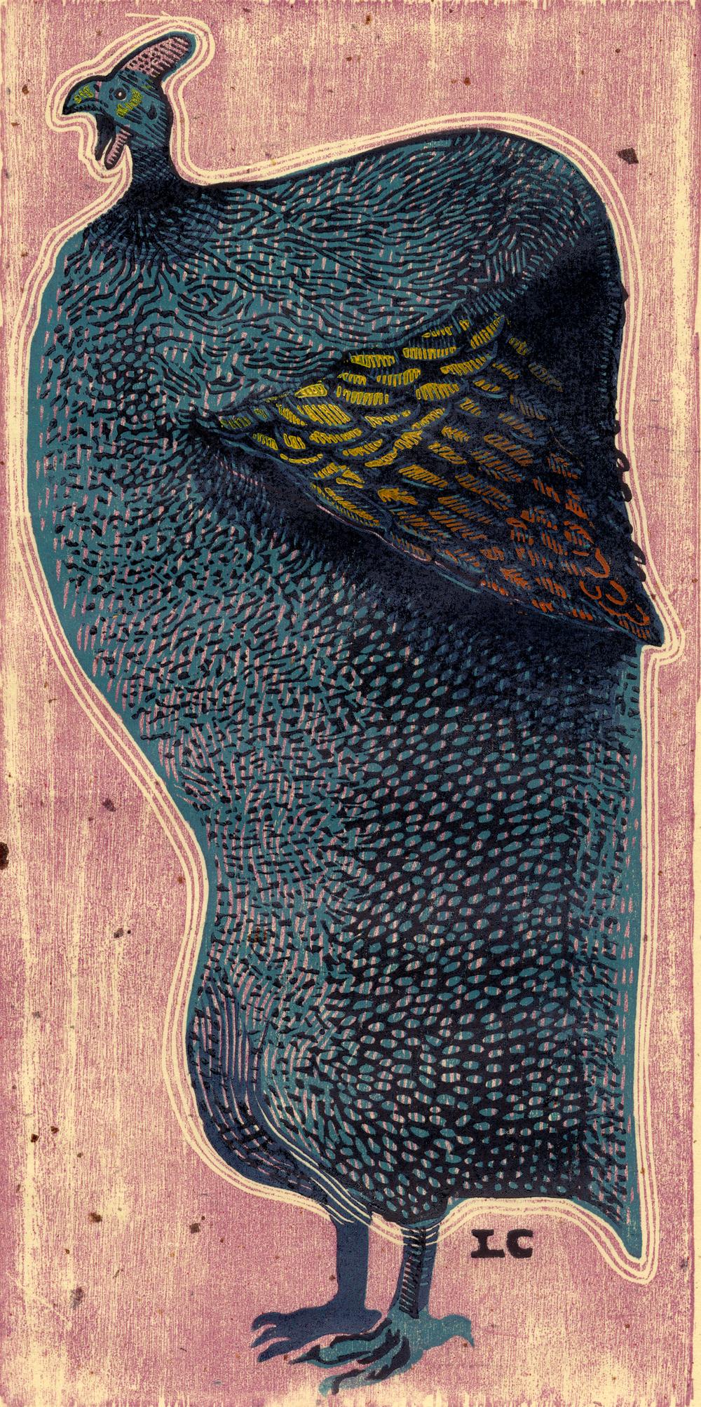 Painted Guinea.jpg
