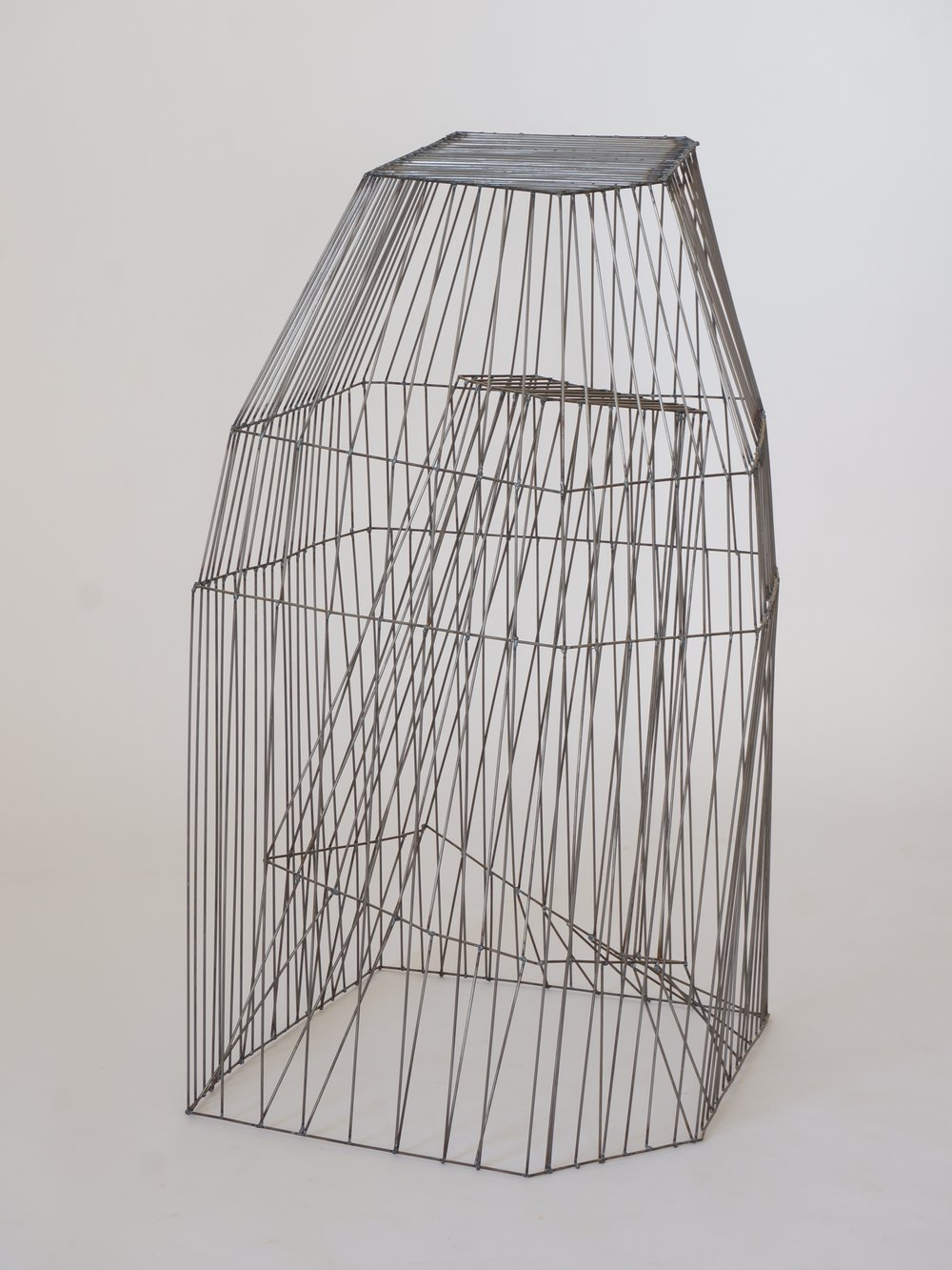 cage 2.jpg