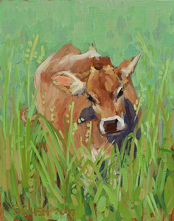 Cow Study 19