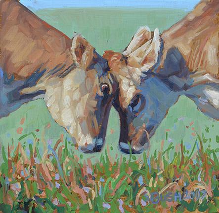 Cow Study 16