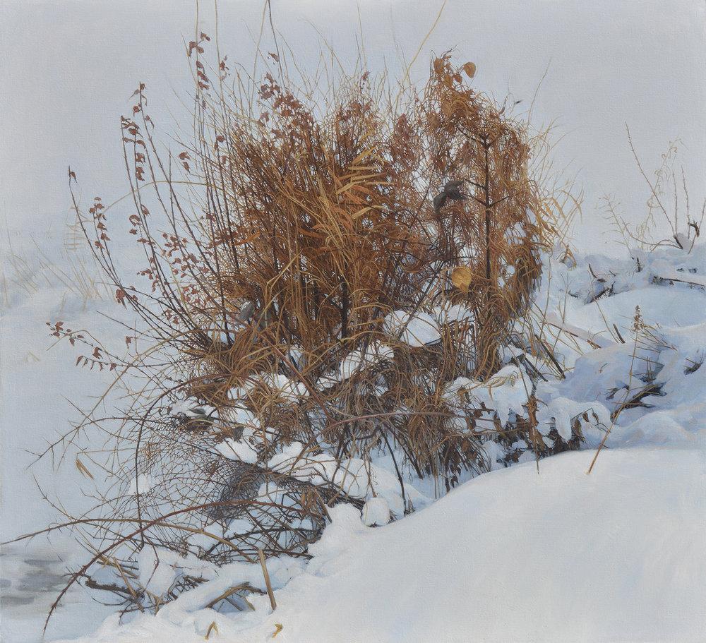 Winter Capriccio.jpg
