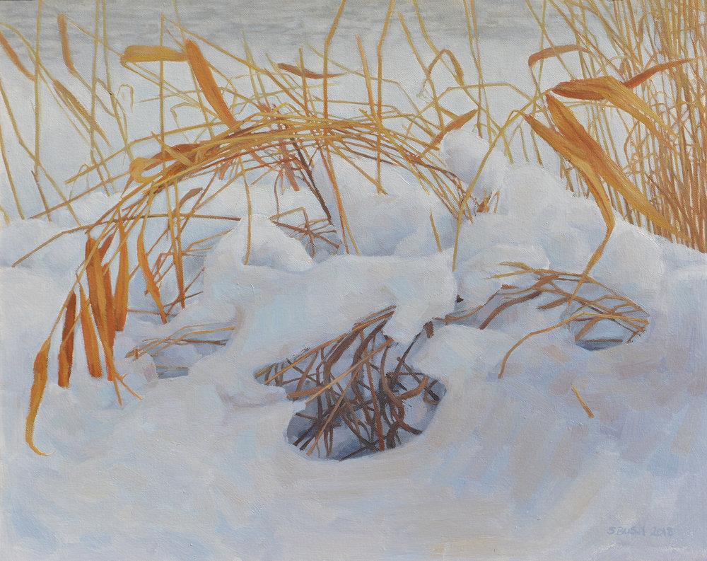 Winter Minuet.jpg